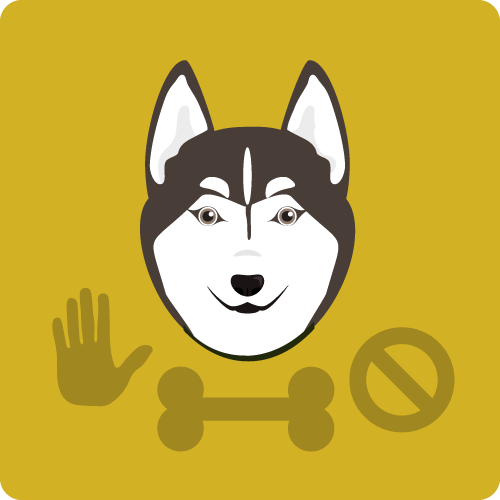 Graphic of white and brown dog face with training symbols of a dog after a basic dog obedience training