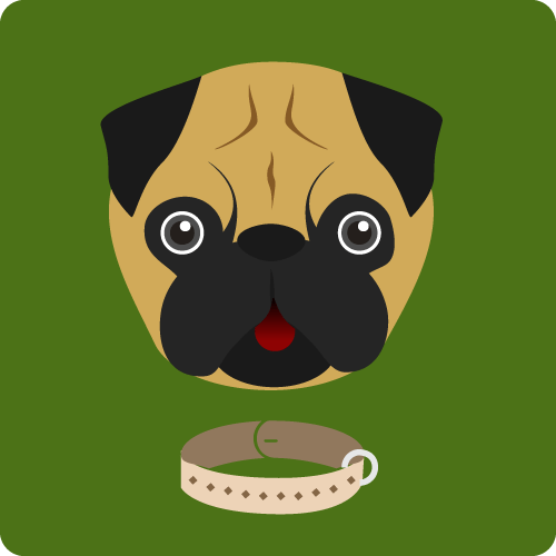 Graphic of pug dog face and dog collar